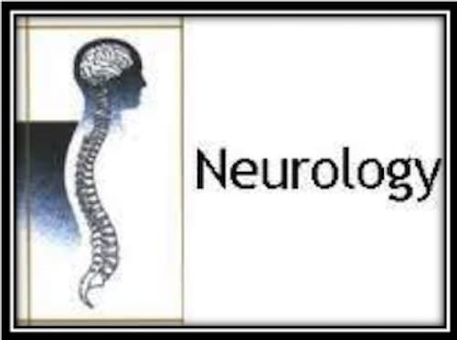 3 Neurology